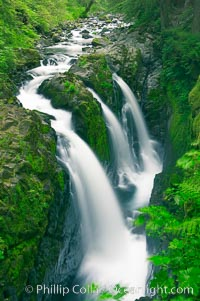 Sol Duc Falls.  Sol Duc Falls is one of the largest and most beautiful waterfalls in Olympic National Park, seen here from a bridge that crosses the canyon just below the falls. Surrounding the falls is an old-growth forest of hemlocks and douglas firs, some of which are three hundred years in age, Sol Duc Springs