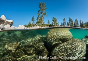 Split view of Trees and Underwater Boulders, Lake Tahoe, Nevada. Lake Tahoe, Nevada, USA, natural history stock photograph, photo id 32335
