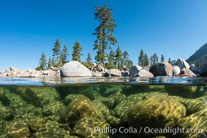 Split view of Trees and Underwater Boulders, Lake Tahoe, Nevada. Lake Tahoe, Nevada, USA, natural history stock photograph, photo id 32339