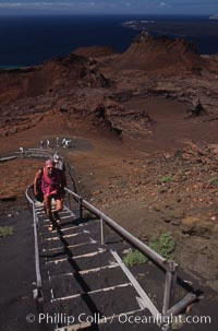 Stairs leading to summit of Bartolome, Bartolome Island