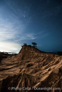 Stars at Night over Broken Hill, Torrey Pines State Reserve, San Diego, California