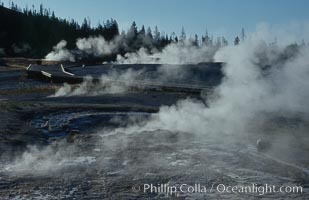 Steam rises from the many geysers, springs and pools on Geyser Hill near Old Faithful, just after sunrise, Yellowstone National Park, Wyoming