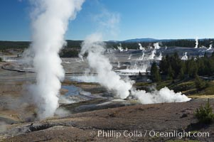 Steam rises in the Porcelain Basin, Norris Geyser Basin, Yellowstone National Park, Wyoming
