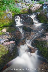 Waterfall, Sunbeam Creek, Mount Rainier National Park, Washington