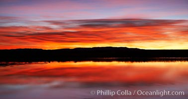Sunrise over Bosque del Apache.  Rich predawn colors are reflected in the main impoundment pond in the refuge, Bosque del Apache National Wildlife Refuge, Socorro, New Mexico