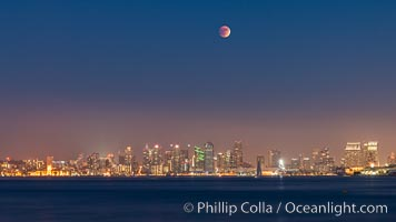 Supermoon Eclipse at Moonrise over San Diego, September 27 2015, natural history stock photograph, photo id 31874