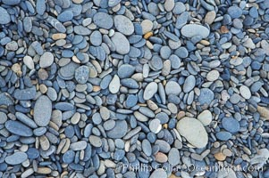 Surfer pills are small beach stones eroded into smooth small round shapes, Ruby Beach, Olympic National Park, Washington