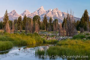 Teton Range from Schwabacher Landing, Grand Teton National Park