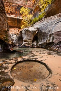 The Subway, a iconic eroded sandstone formation in Zion National Park