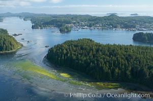 Lemmens Inlet viewed from Meares Island, with Tofino in the distance, aerial photo, on the west coast of Vancouver Island