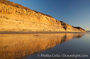 Sandstone cliffs rise above the beach at Torrey Pines State Reserve. Torrey Pines State Reserve, San Diego, California, USA, natural history stock photograph, photo id 14725