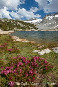 Townsley Lake (10396'), a beautiful alpine lake sitting below blue sky, clouds and Fletcher Peak (right), lies amid the Cathedral Range of glacier-sculpted granite peaks in Yosemite's high country, near Vogelsang High Sierra Camp, Yosemite National Park, California