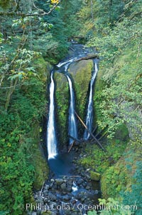 Triple Falls, in the upper part of Oneonta Gorge, fall 130 feet through a lush, beautiful temperate rainforest, Columbia River Gorge National Scenic Area, Oregon