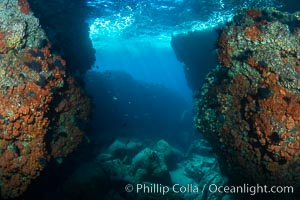 The Tunnel at Los Islotes, Sea of Cortez