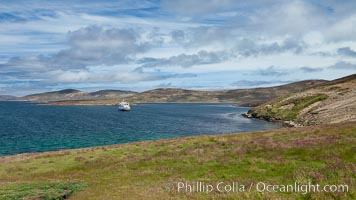 Typical grasslands of the Falkland Islands, with icebreak ship M/V Polar Star at anchor just offshore, New Island