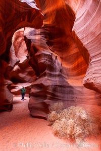 Upper Antelope Canyon slot canyon, Navajo Tribal Lands, Page, Arizona