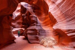 Upper Antelope Canyon slot canyon. Navajo Tribal Lands, Page, Arizona, USA, natural history stock photograph, photo id 26670