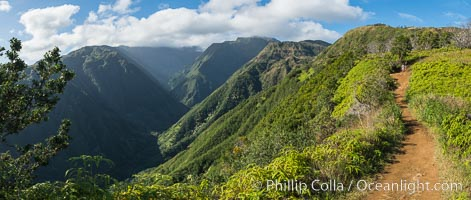 Waihee Ridge trail overlooking Waihee Canyon, Maui, Hawaii, Panoramic Photo
