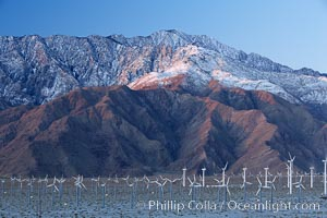 Wind turbines rise above the flat floor of the San Gorgonio Pass near Palm Springs, with snow covered Mount San Jacinto in the background, provide electricity to Palm Springs and the Coachella Valley