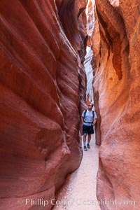 A hiker walking through the Wire Pass narrows.  This exceedingly narrow slot canyon, in some places only two feet wide, is formed by water erosion which cuts slots deep into the surrounding sandstone plateau, Paria Canyon-Vermilion Cliffs Wilderness, Arizona