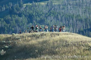 Wolf watchers gather on a bluff near Slough Creek with high power field scopes and binoculars to observe the Slough Creek pack of wolves, Lamar Valley, Yellowstone National Park, Wyoming