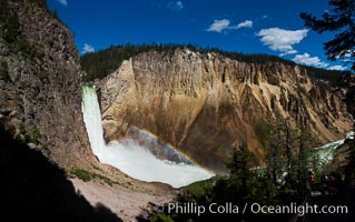 Panorama of Yellowstone Falls from Uncle Tom's Trail.  Lower Yellowstone Falls shows a beautiful rainbow as it cascades 308' in a thundering plunge into the Grand Canyon of the Yellowstone River, Yellowstone National Park, Wyoming