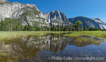 Yosemite Falls reflected in flooded meadow.  The Merced  River floods its banks in spring, forming beautiful reflections of Yosemite Falls, Yosemite National Park, California