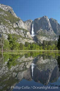 Yosemite Falls is reflected in a springtime pool in flooded Cooks Meadow, Yosemite Valley, Yosemite National Park, California
