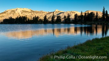 Choo-choo Ridge (11357') is reflected in Townsley Lake (10,353') at sunrise, Yosemite National Park, California
