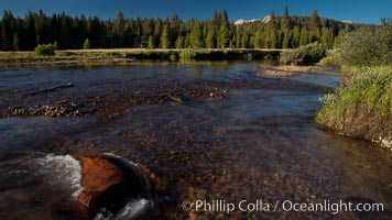 Tuolumne River flows through Tuolumne Meadows at sunset, Yosemite National Park, California