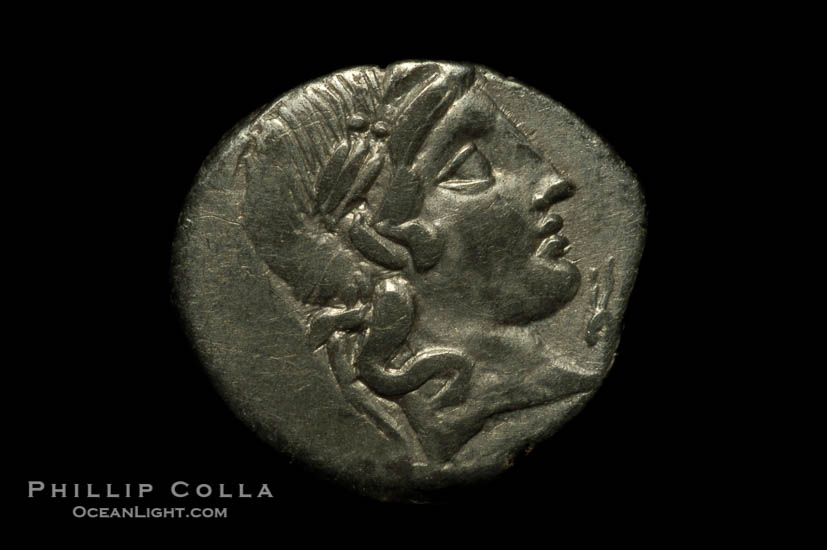 Ancient Roman coin, minted by C. Vibius C.F. Pansa (90 B.C.), (silver, denom/type: Denarius)., natural history stock photograph, photo id 06508