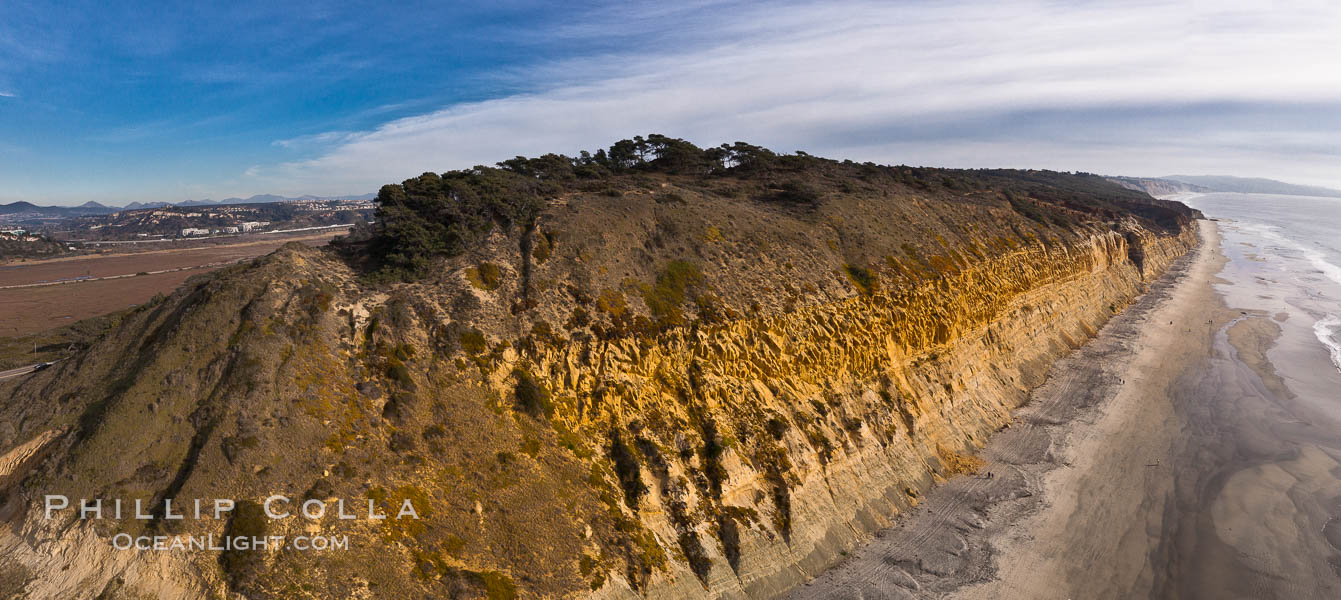 Torrey Pines balloon aerial survey photo.  Torrey Pines seacliffs, rising up to 300 feet above the ocean, stretch from Del Mar to La Jolla. On the mesa atop the bluffs are found Torrey pine trees, one of the rare species of pines in the world. Peregine falcons nest at the edge of the cliffs. This photo was made as part of an experimental balloon aerial photographic survey flight over Torrey Pines State Reserve, by permission of Torrey Pines State Reserve. Torrey Pines State Reserve, San Diego, California, USA, natural history stock photograph, photo id 27275