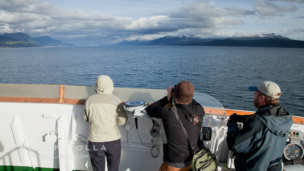 Bird watching, birding from the tallest deck of the M/V Polar Star as it sails south through the Beagle Channel. Beagle Channel, Ushuaia, Tierra del Fuego, Argentina, natural history stock photograph, photo id 23621