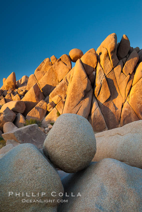 Boulders and sunset in Joshua Tree National Park.  The warm sunlight gently lights unusual boulder formations at Jumbo Rocks in Joshua Tree National Park, California. Joshua Tree National Park, California, USA, natural history stock photograph, photo id 26720