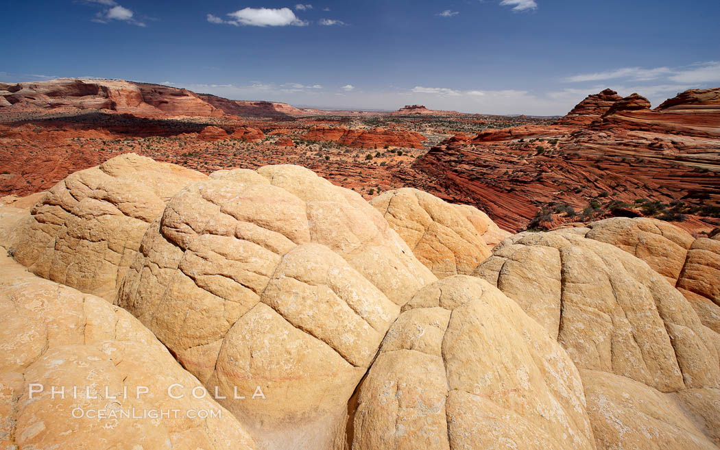 Brain rocks, curious sandstone formations in the North Coyote Buttes.,  Copyright Phillip Colla, image #20611, all rights reserved worldwide.