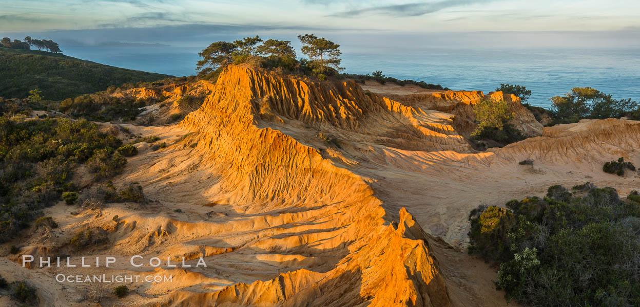 Broken Hill and view to La Jolla, from Torrey Pines State Reserve, sunrise. San Diego, California, USA, natural history stock photograph, photo id 28396