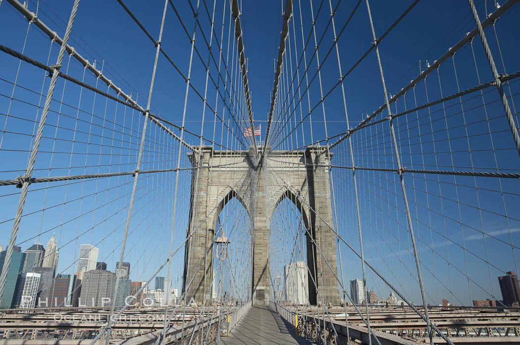 Brooklyn Bridge cables and tower. New York City, USA, natural history stock photograph, photo id 11068