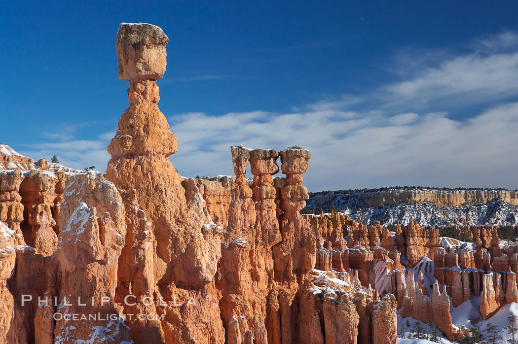 Bryce Canyon hoodoos line all sides of the Bryce Amphitheatre. Bryce Canyon National Park, Utah, USA, natural history stock photograph, photo id 18630
