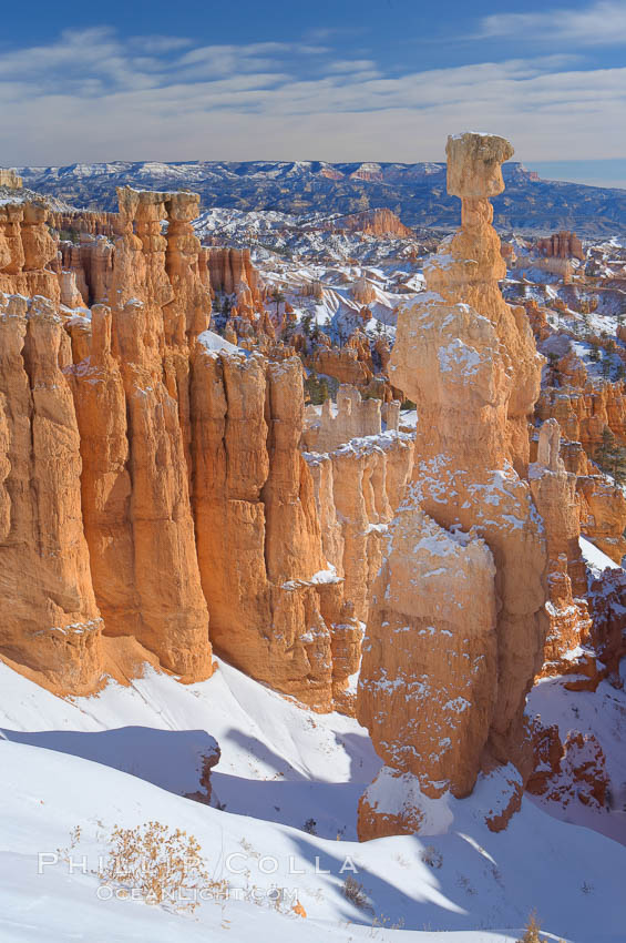 Bryce Canyon hoodoos line all sides of the Bryce Amphitheatre. Bryce Canyon National Park, Utah, USA, natural history stock photograph, photo id 18639