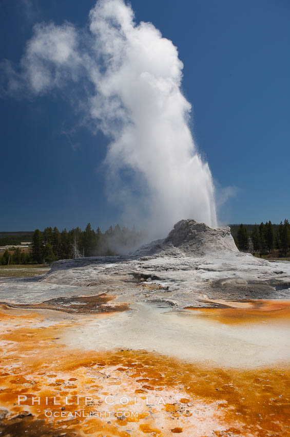 Castle Geyser erupts with the colorful bacteria mats of Tortoise Shell Spring in the foreground.  Castle Geyser reaches 60 to 90 feet in height and lasts 20 minutes.  While Castle Geyser has a 12 foot sinter cone that took 5,000 to 15,000 years to form, it is in fact situated atop geyserite terraces that themselves may have taken 200,000 years to form, making it likely the oldest active geyser in the park. Upper Geyser Basin, Yellowstone National Park, Wyoming