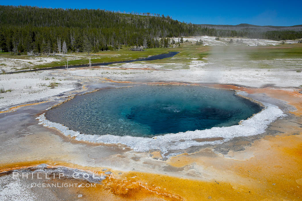 Crested Pool is a blue, superheated pool.  Unfortunately, it has claimed a life.  It reaches a overflowing boiling state every few minutes, then subsides a bit before building to a boil and overflow again.  Upper Geyser Basin, Yellowstone National Park, Wyoming