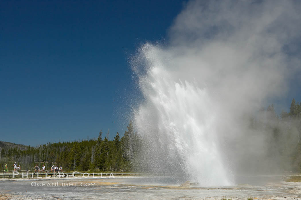 Daisy Geyser erupting with visitors visible in the distance..  Daisy Geyser, a cone-type geyser that shoots out of the ground diagonally, is predictable with intervals ranging from 120 to over 200 minutes.  It reaches heights of 75 feet, lasts 3 to 4 minutes and rarely erupts in concert with nearby Splendid Geyser.  Upper Geyser Basin, Yellowstone National Park, Wyoming