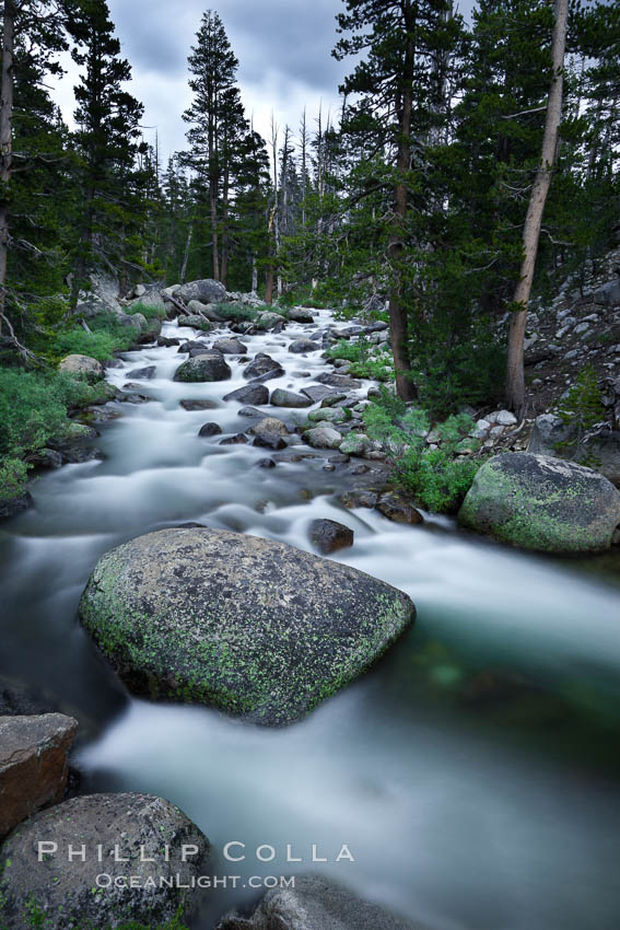 Dana Fork of the Tuolumne River, near Tioga Pass. Yosemite National Park, California, USA, natural history stock photograph, photo id 26998