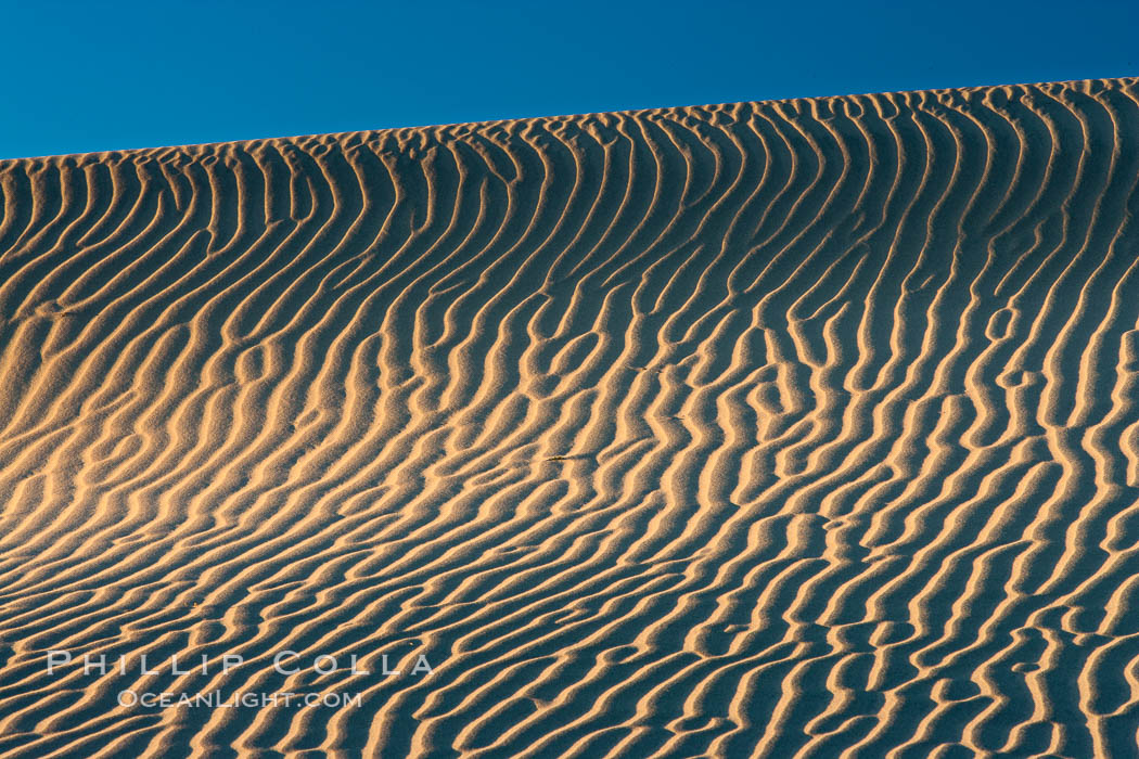 Ripples in sand dunes at sunset, California.  Winds reshape the dunes each day.  Early morning walks among the dunes can yield a look at sidewinder and kangaroo rats tracks the nocturnal desert animals leave behind, Stovepipe Wells, Death Valley National Park