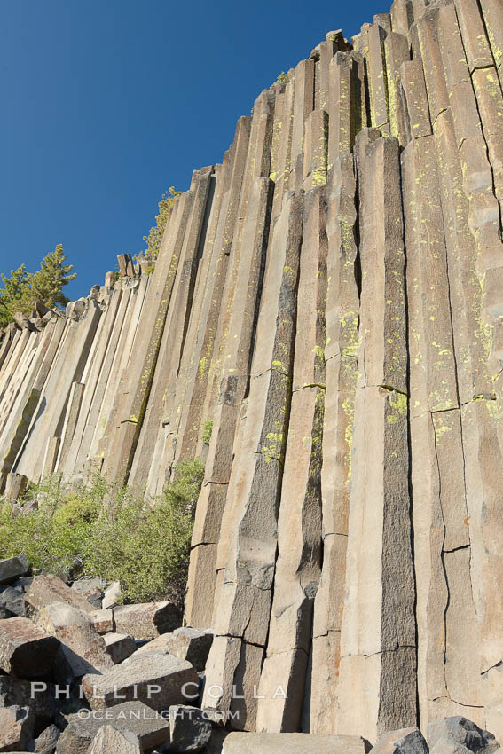 Devil's Postpile, a spectacular example of columnar basalt.  Once molten and under great pressure underground, the lava that makes up Devil's Postpile cooled evenly and slowly, contracting and fracturing into polygonal-sided columns.  The age of the formation is estimated between 100 and 700 thousand years old.  Sometime after the basalt columns formed, a glacier passed over the formation, cutting and polishing the tops of the columns.  The columns have from three to seven sides, varying because of differences in how quickly portions of the lava cooled. Devils Postpile National Monument, California, USA, natural history stock photograph, photo id 23285