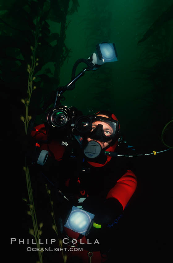 Diver and camera, Point Loma. San Diego, California, USA, natural history stock photograph, photo id 01486