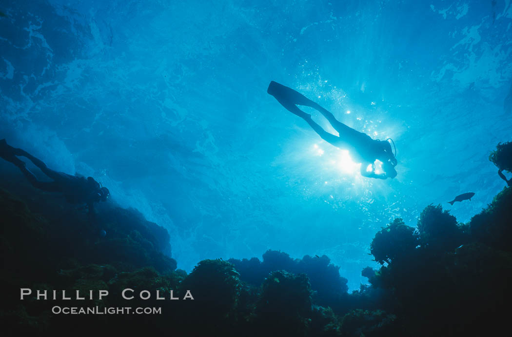 Diver silhouette.,  Copyright Phillip Colla, image #00251, all rights reserved worldwide.
