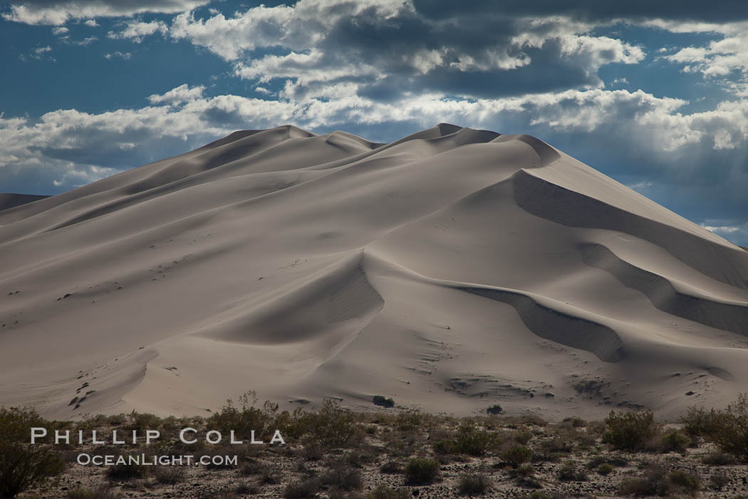"Eureka Valley Sand Dunes.  The Eureka Dunes are California's tallest sand dunes, and one of the tallest in the United States.  Rising 680' above the floor of the Eureka Valley, the Eureka sand dunes are home to several endangered species, as well as ""singing sand"" that makes strange sounds when it shifts. Eureka Dunes, Death Valley National Park, California, USA, natural history stock photograph, photo id 25279"