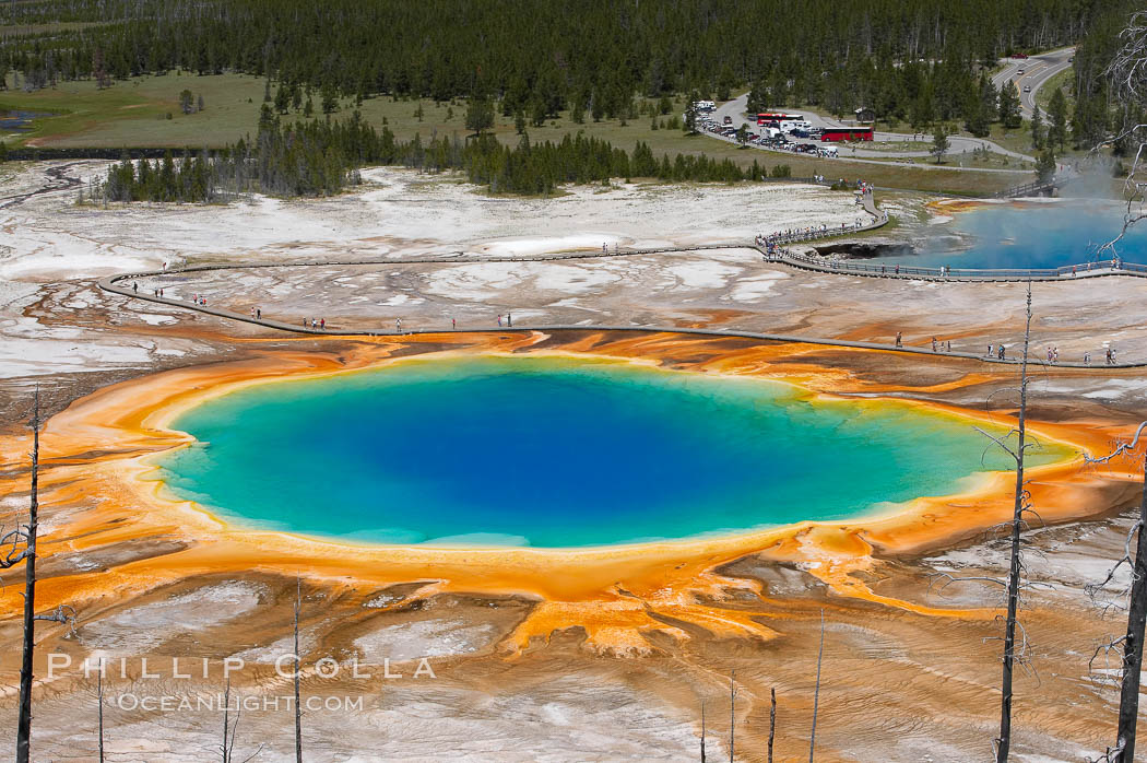 Grand Prismatic Spring (left) and Excelsior Geyser (right).  Grand Prismatic Spring displays a stunning rainbow of colors created by species of thermophilac (heat-loving) bacteria that thrive in narrow temperature ranges.  The blue water in the center is too hot to support any bacterial life, while the outer orange rings are the coolest water.  Grand Prismatic Spring is the largest spring in the United States and the third-largest in the world.  Midway Geyser Basin.,  Copyright Phillip Colla, image #13571, all rights reserved worldwide.