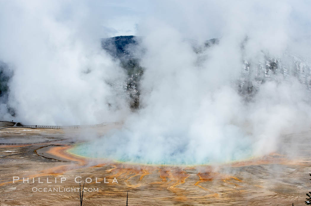 Grand Prismatic Spring steams in cold winter air.,  Copyright Phillip Colla, image #19593, all rights reserved worldwide.